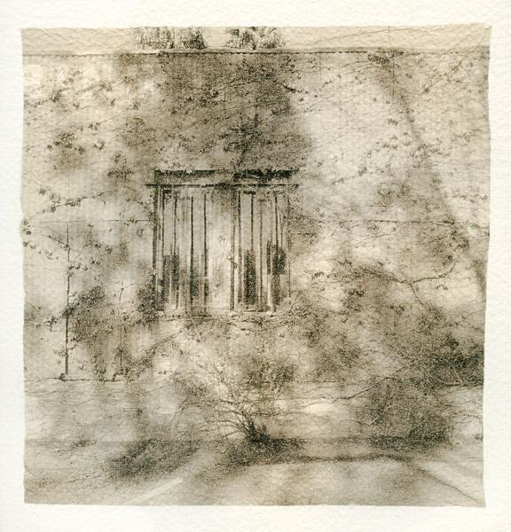 023 Vine-covered Wall 2018 Sara Yerkes_1